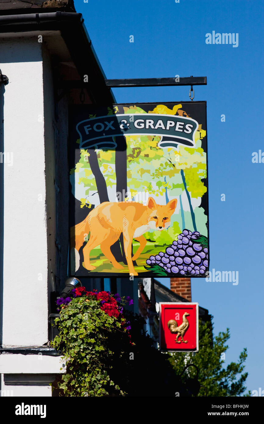 Fox and grapes pub sign and blue sky with rooster sign - Stock Image