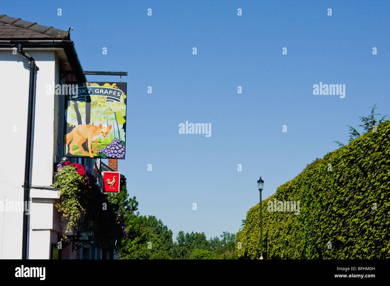 Fox and Grapes pub sign in Wimbledon, London England - Stock Image