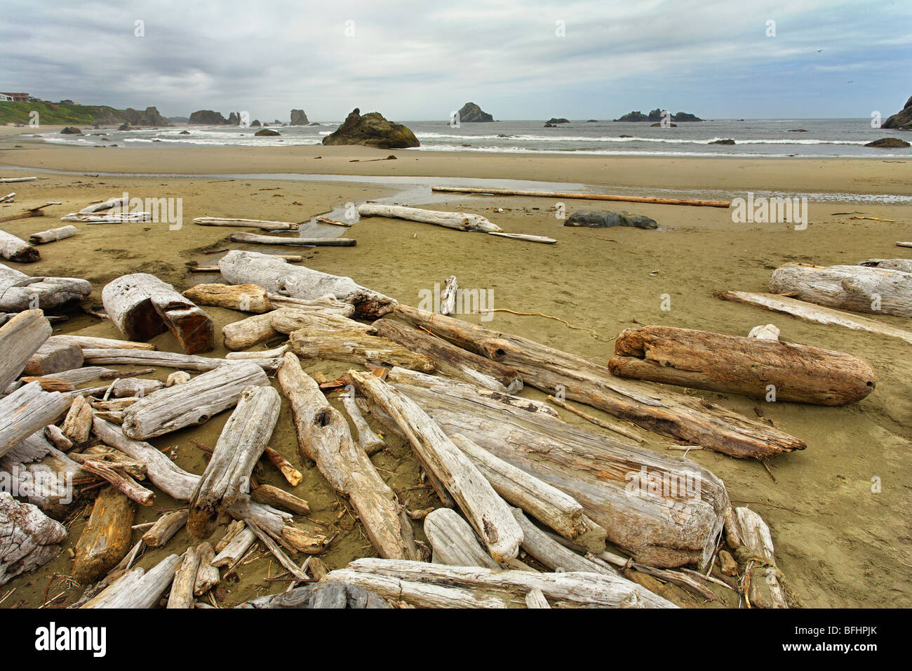 Drift logs along the rugged Pacific Coast in Oregon. - Stock Image