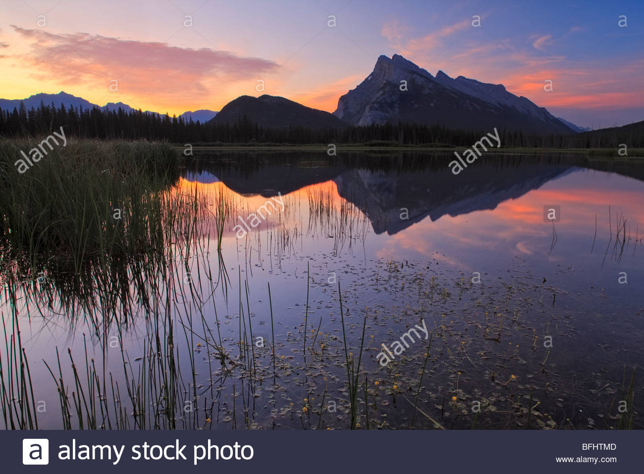 Mount Rundle from First Vermilion Lake, Alberta, Canada - Stock Image