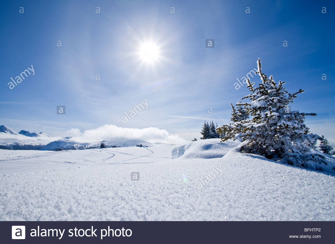 Winter Landscape at Sunshine Village Ski Resort, Alberta Stock Photo