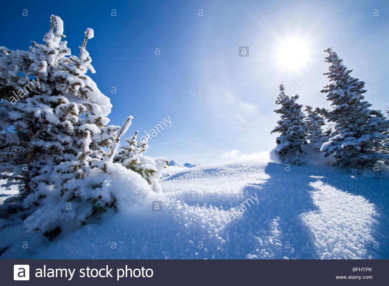 Winter Landscape at Sunshine Village Ski Resort, Alberta - Stock Image