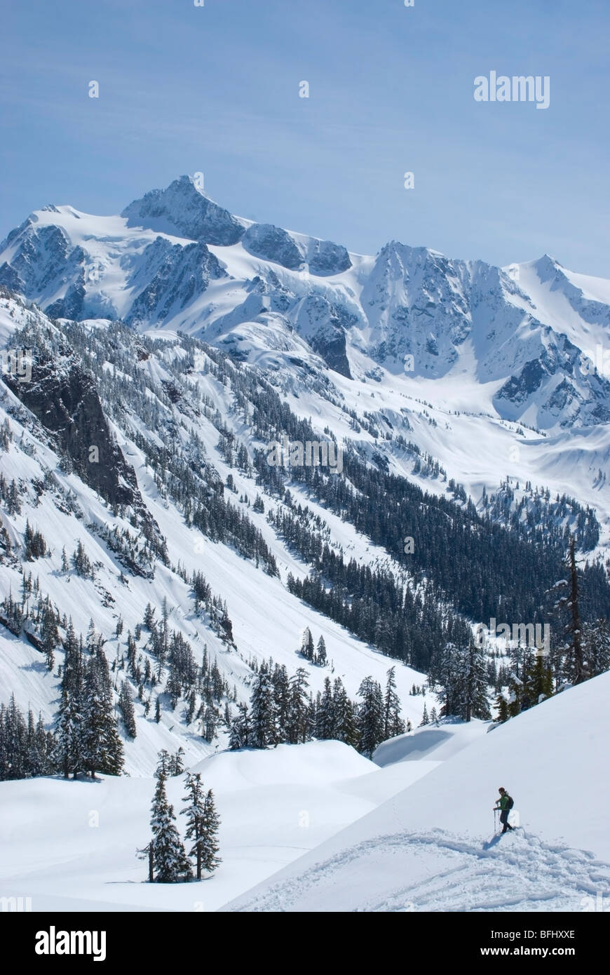 A lone snowshoer on a sunny spring day at Mount Baker with Mount Shuksan in distance Snoqualmie National Forest - Stock Image