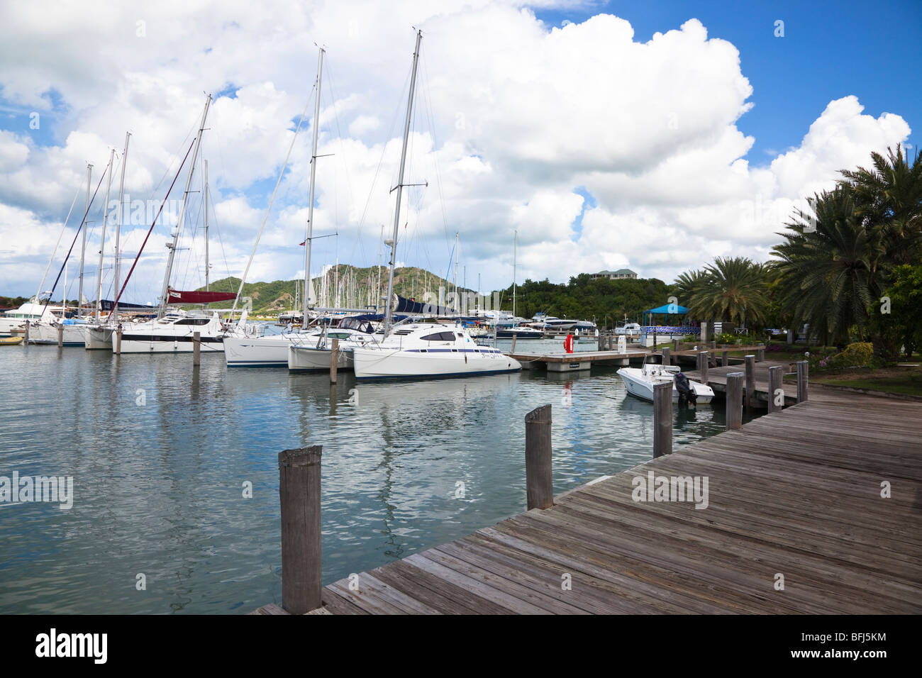 Yachts in marina at Jolly Harbour, Antigua, West Indies - Stock Image