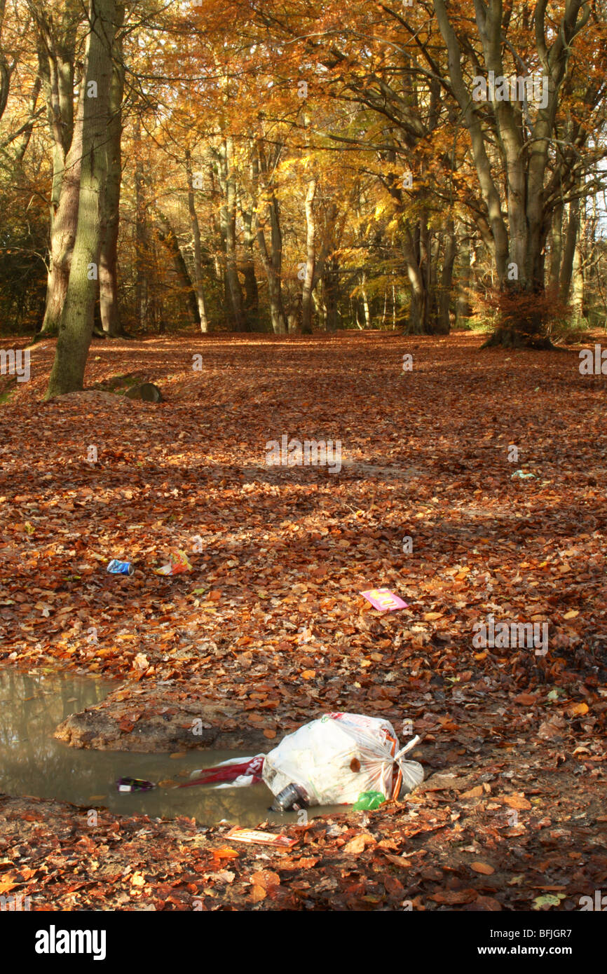 Littering in Downley woods close to Le de Spencers Arms, High Wycombe, Buckinghamshire, United Kingdom - Stock Image