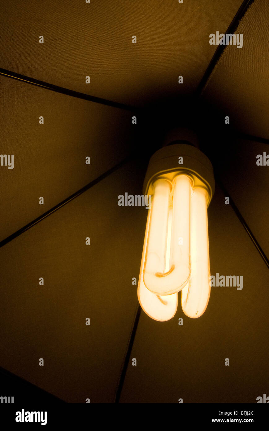 low energy light bulb switched on and glowing - Stock Image