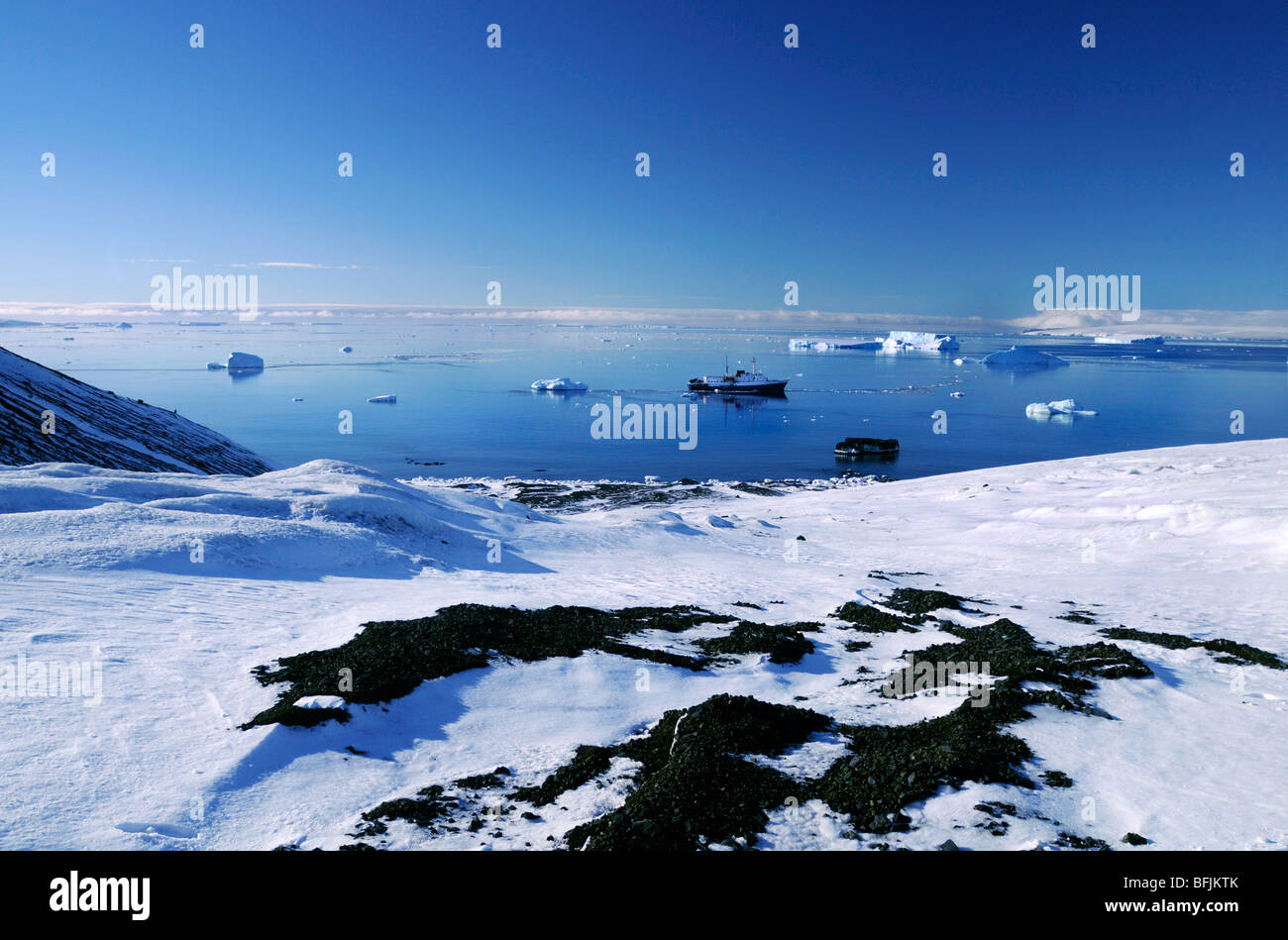 Antarctic expedition ship MV Ushuaia anchored at Brown Bluff in Antarctica - Stock Image