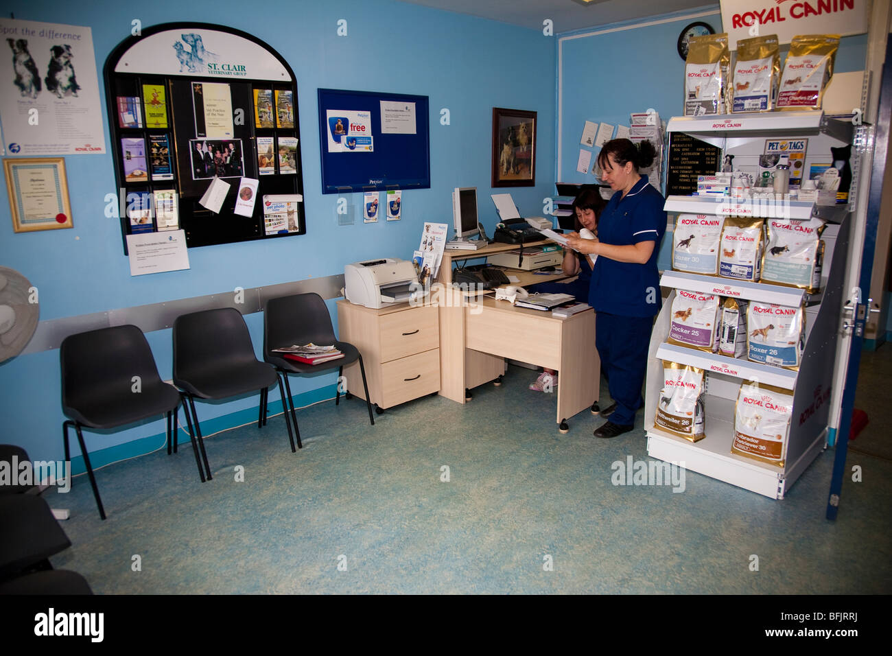 Reception and Waiting Room at a Veterinary Clinic - Stock Image