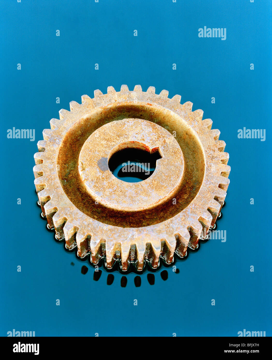 Gearwheel, close-up. - Stock Image