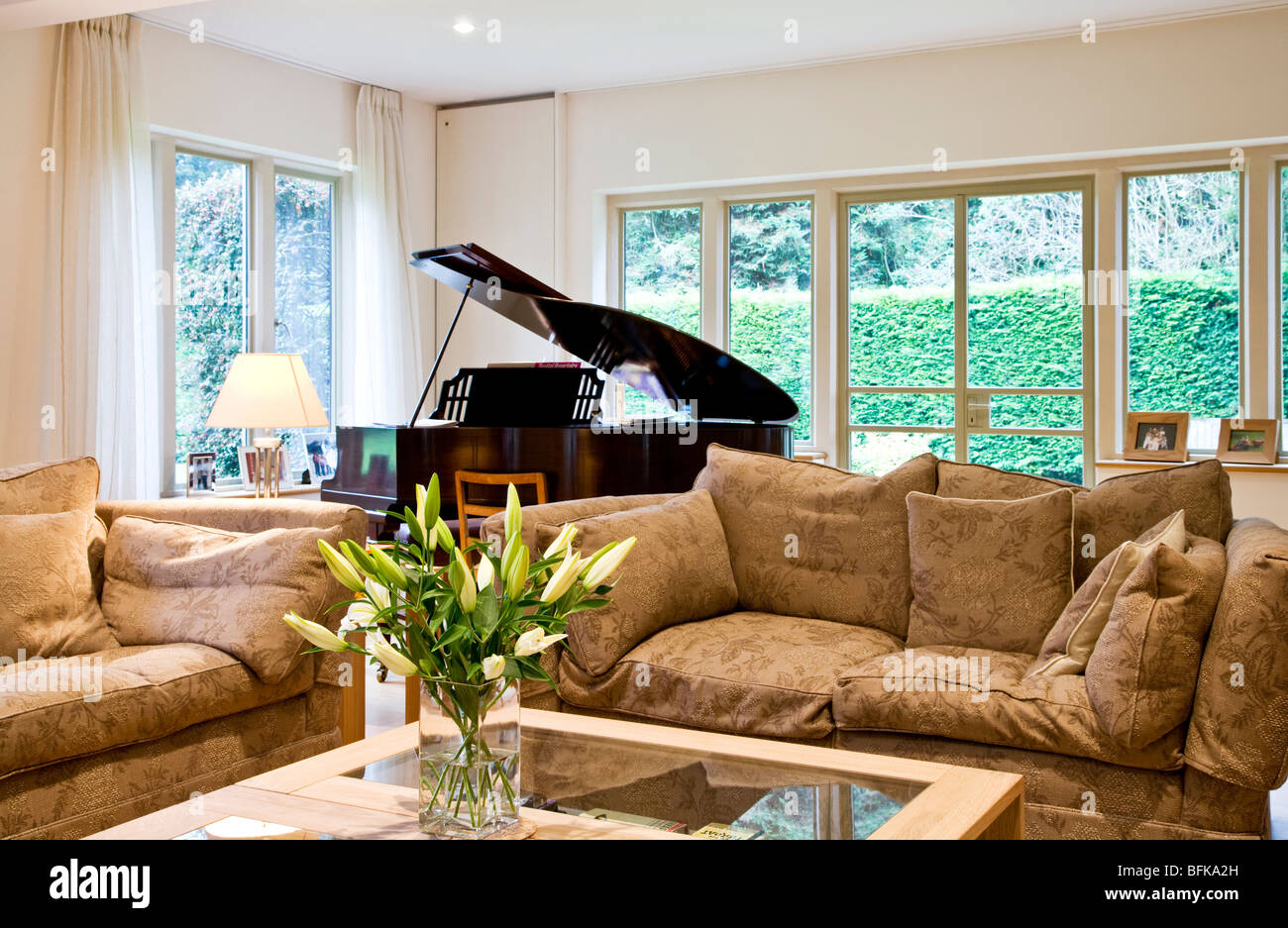 A stylish smart modern lounge, living or sitting room with a baby grand piano and vase of white lilies - Stock Image