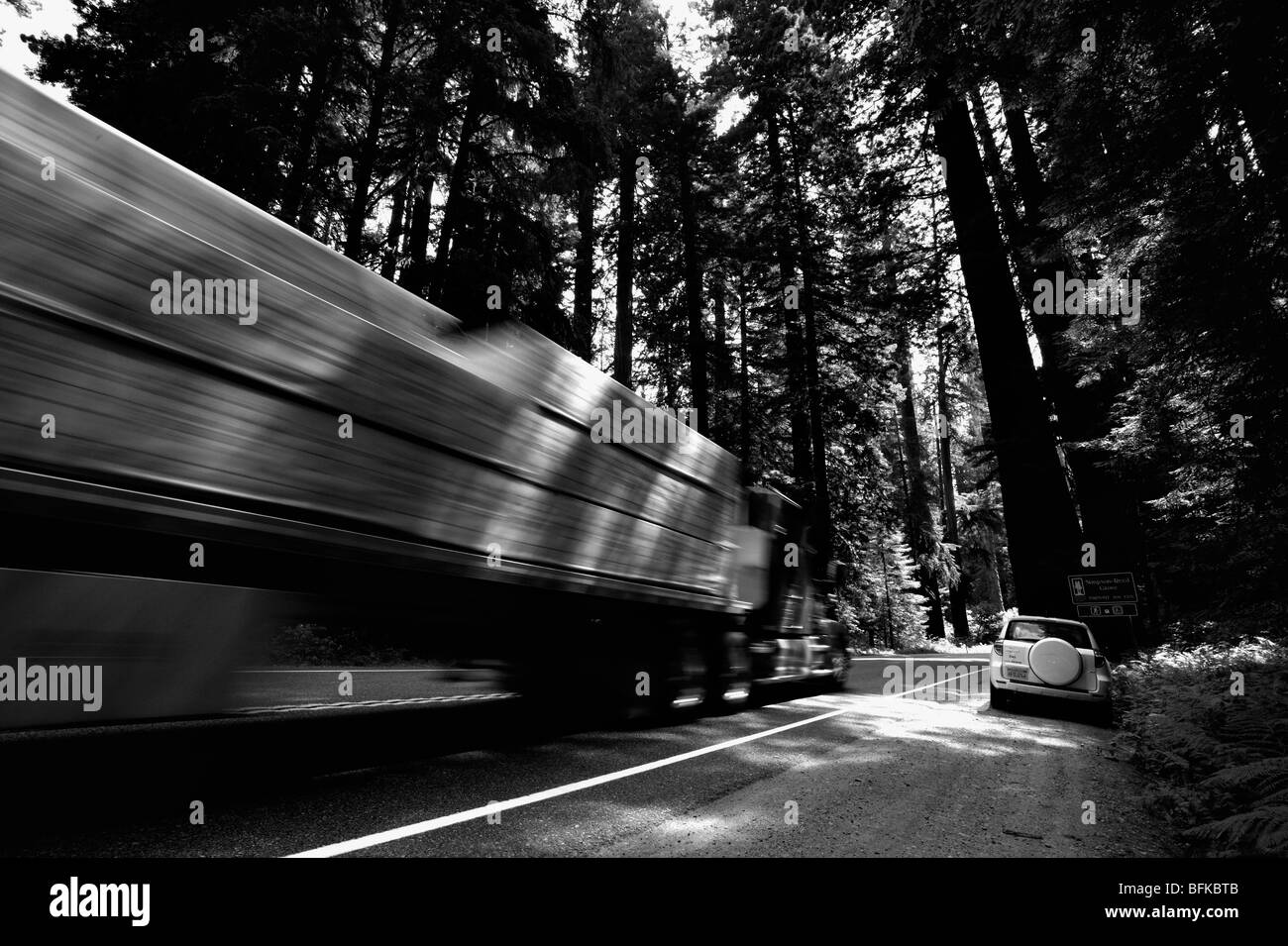 Truck overtaking a parked car in the coastal Redwood forests of north California, USA - Stock Image