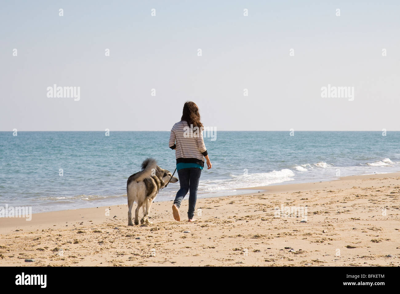 Teenage Girl Walking with Inuit Dog on Beach Norfolk UK - Stock Image