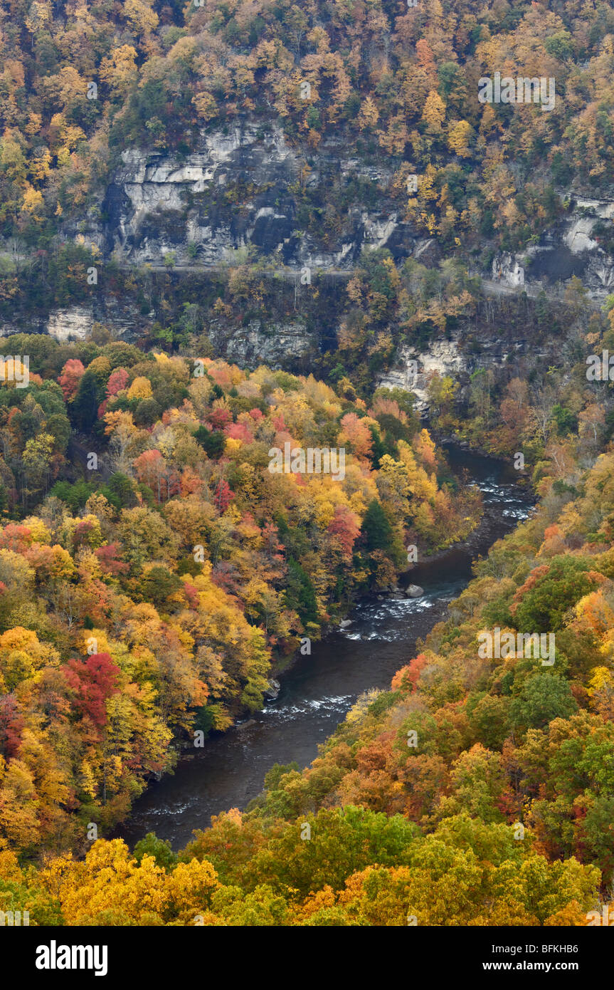 Autumn Color on the Russell Fork River in Breaks Interstate Park in Kentucky - Stock Image