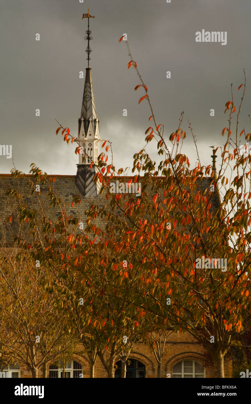The white tower of Barnstaple town hall in Autumn North Devon UK - Stock Image