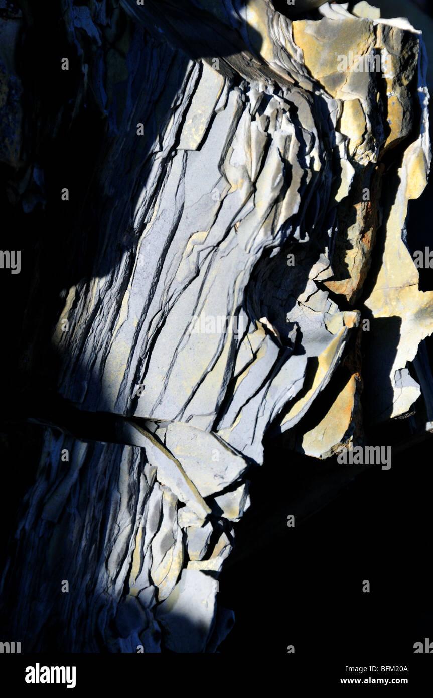 Organic rich shale rock, Oklahoma, USA. - Stock Image
