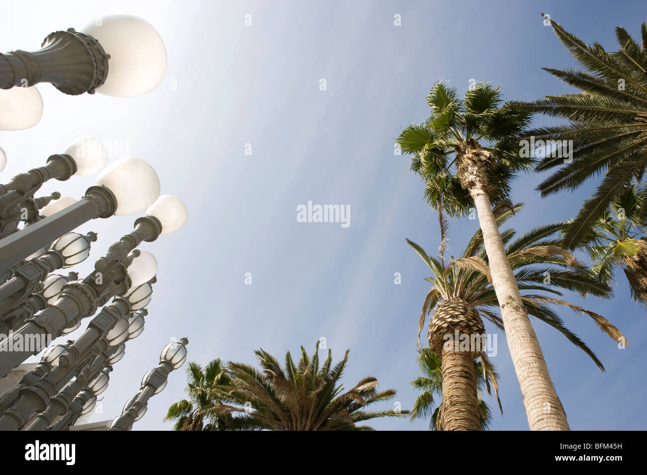 LACMA lights and palm trees with blue sky - Stock Image