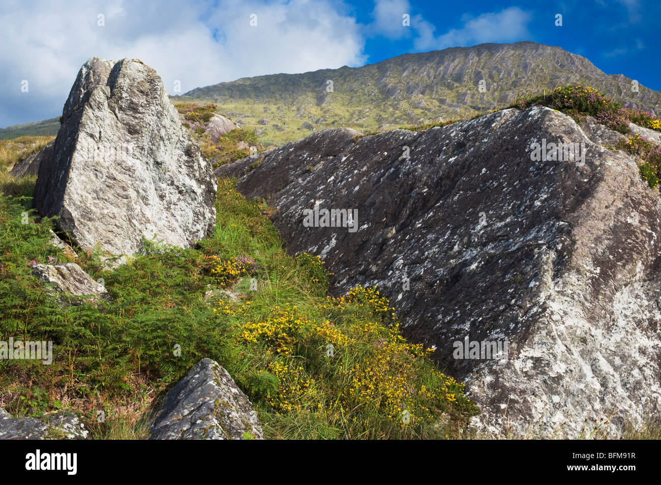Sugarloaf Mountain, Beara, West Cork, Ireland - Stock Image
