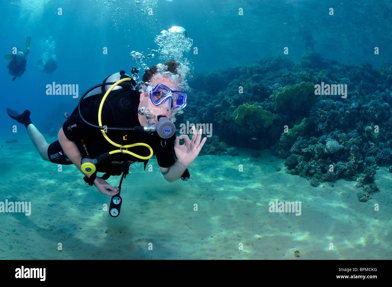 Scuba diver giving OK signal. 'Red Sea' - Stock Image
