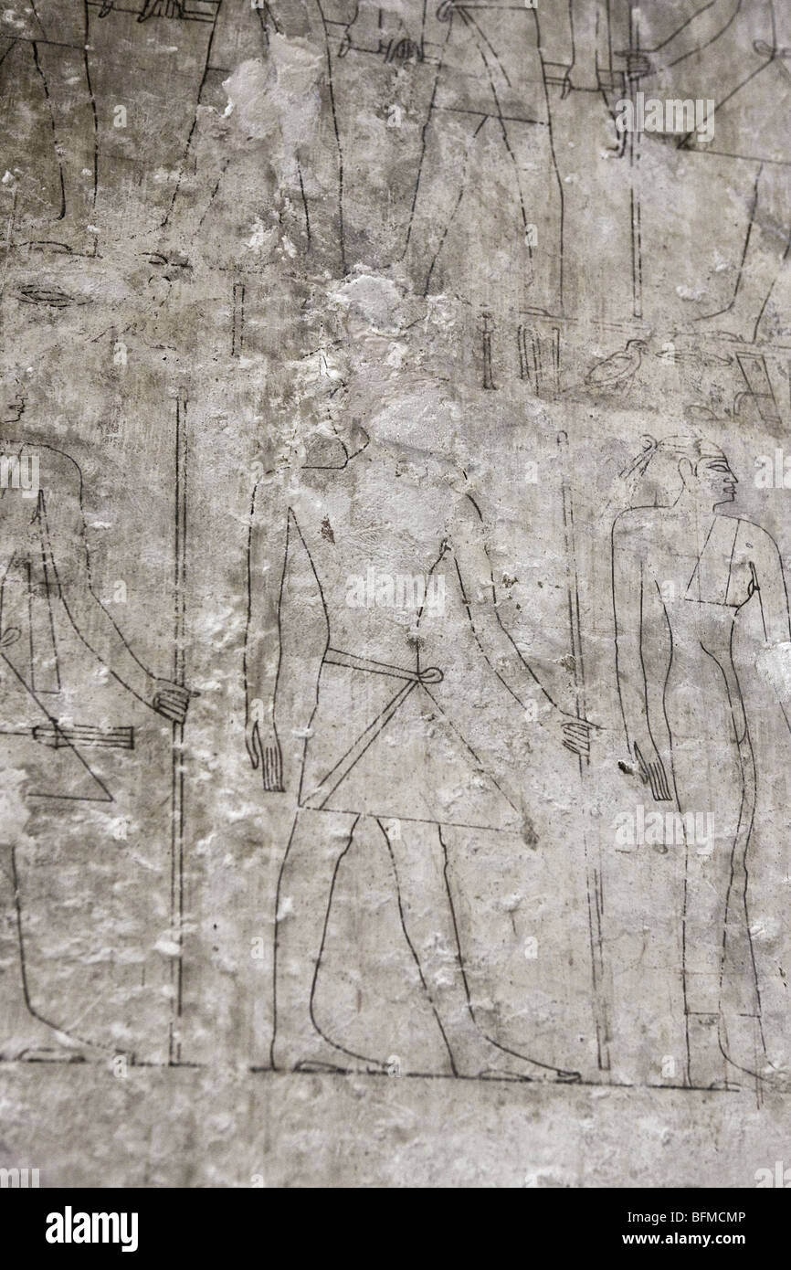 Drawn outlines for the reliefs in the Tombs at Meir , North West of Assyut in Middle Egypt - Stock Image