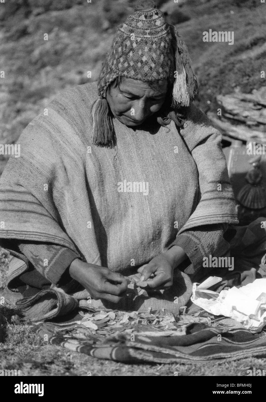Qeros Native Quechua Indians using coca leaves to forecast the future. - Stock Image