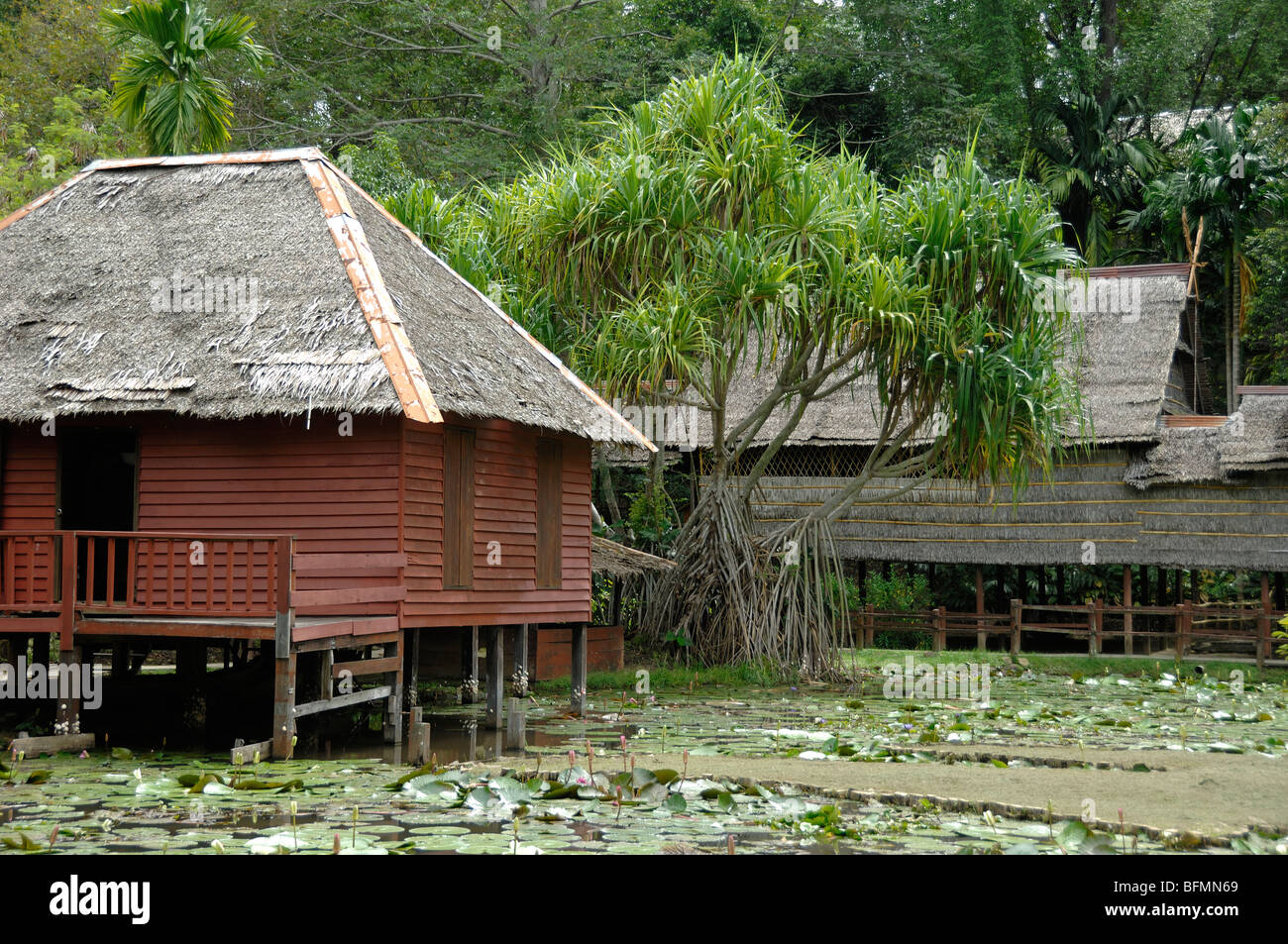 Brunei House & Pandanus pulcher Palm, from SW Sabah, Sabah State Museum Botanical Gardens, Kota Kinabalu, Sabah, - Stock Image