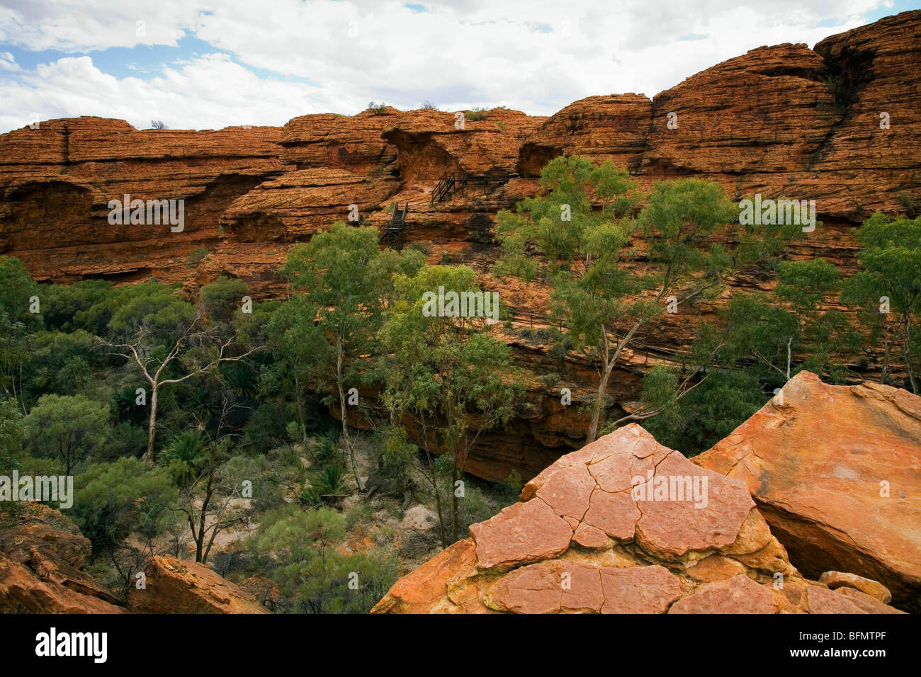 Australia, Northern Territory, Watarrka (Kings Canyon) National Park. The Garden of Eden - a natural pool in Kings - Stock Image
