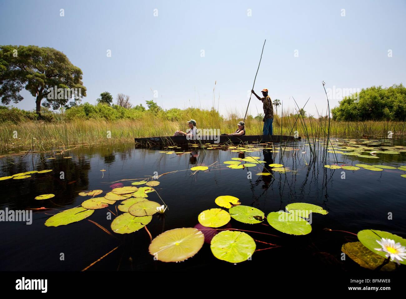Botswana, Okavango Delta. A local guide punts a mokoro through the channels of the Okavango Delta - Stock Image