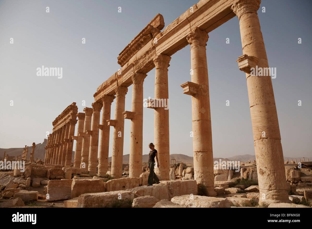 Queen Of Palmyra Stock Photos & Queen Of Palmyra Stock Images - Alamy