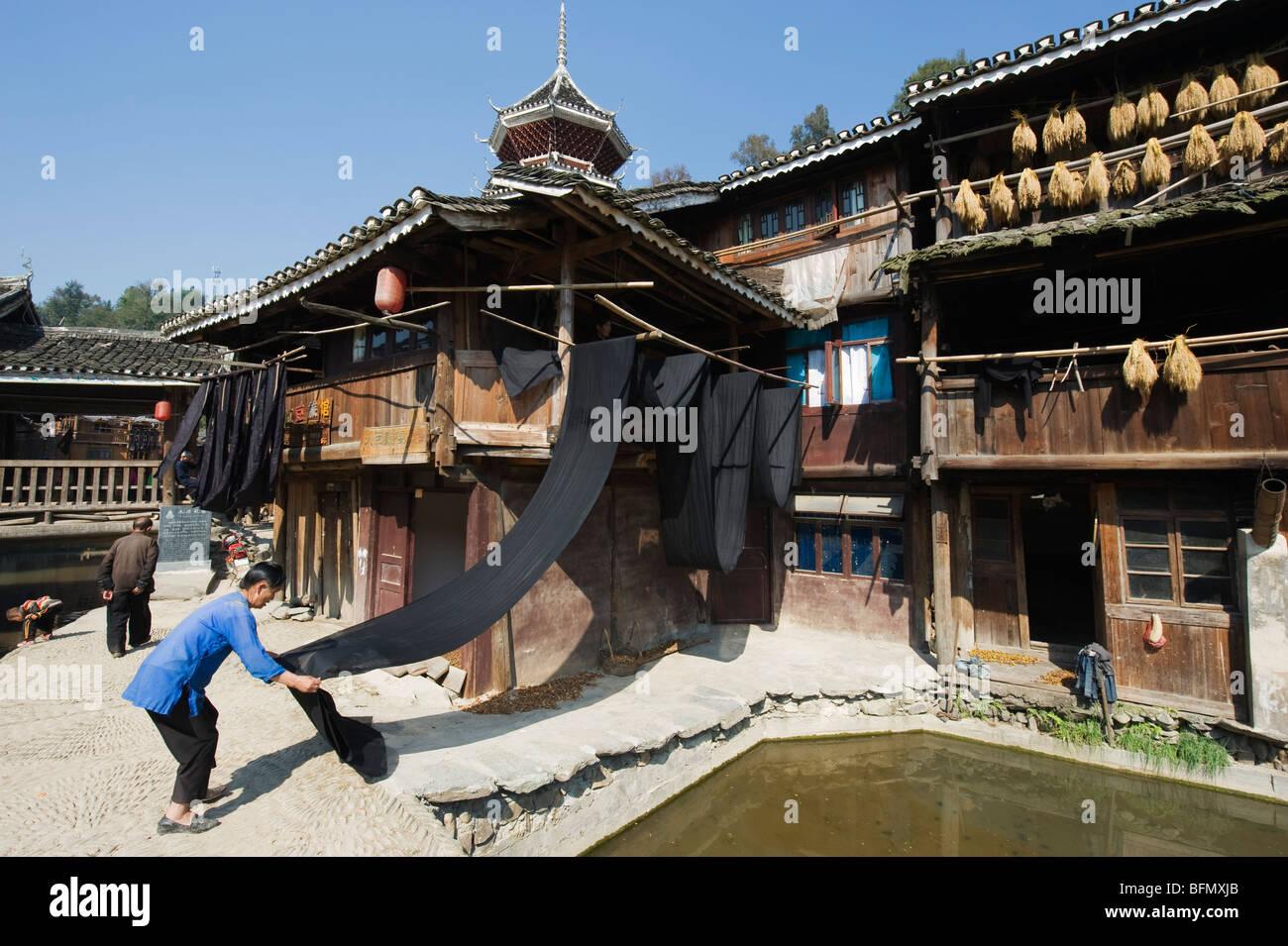 China, Guizhou Province, Zhaoxing Dong village; woman drying Indigo Stock Photo