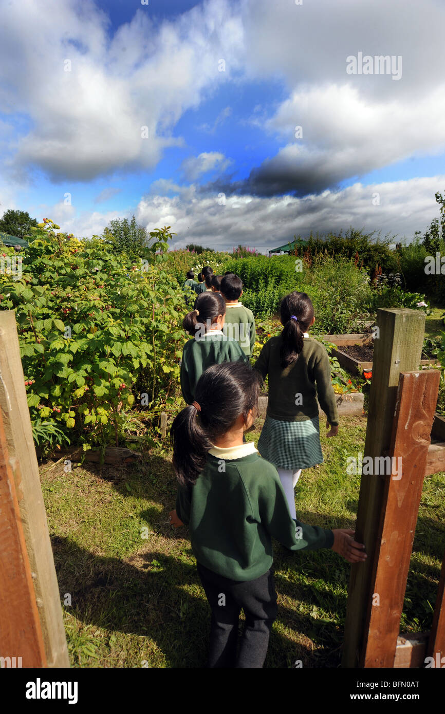 Children visit allotments from local schools, Bradford Stock Photo