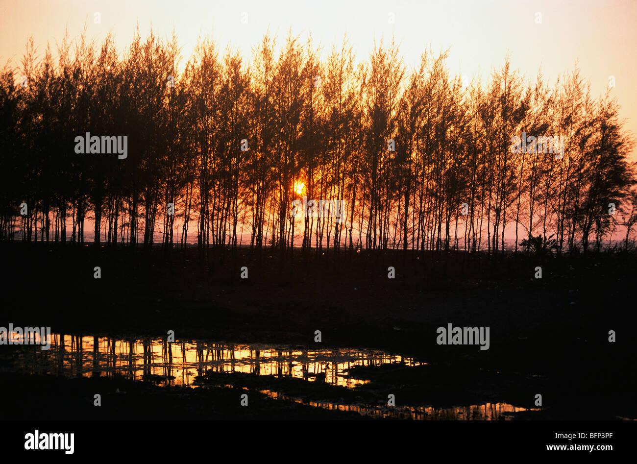 MMN 63431 : Sunset at Devka beach ; Nani Daman ; Daman UT ; India - Stock Image