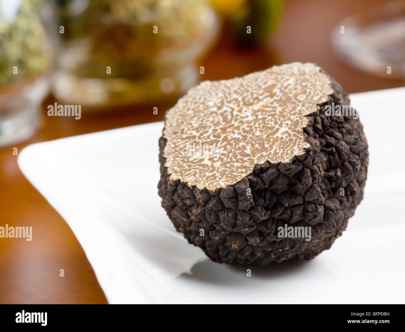 Mushroom of truffle on a white dish - Stock Image