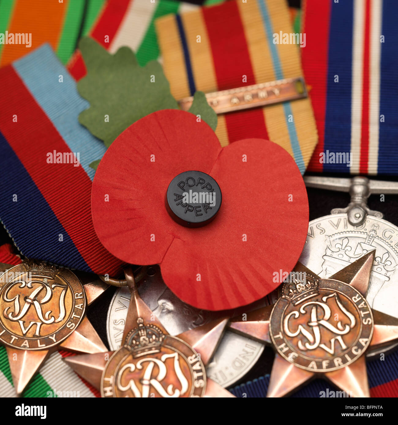A poppy within a group of war medals - Stock Image