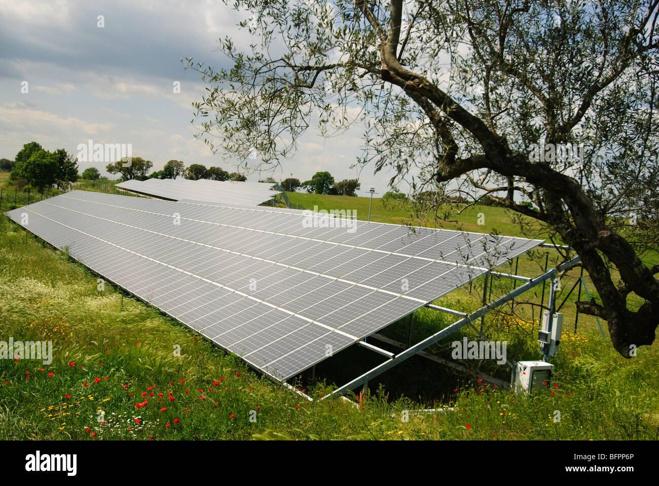 Photovoltaic panels, Tarquinia, Lazio, Italy - Stock Image