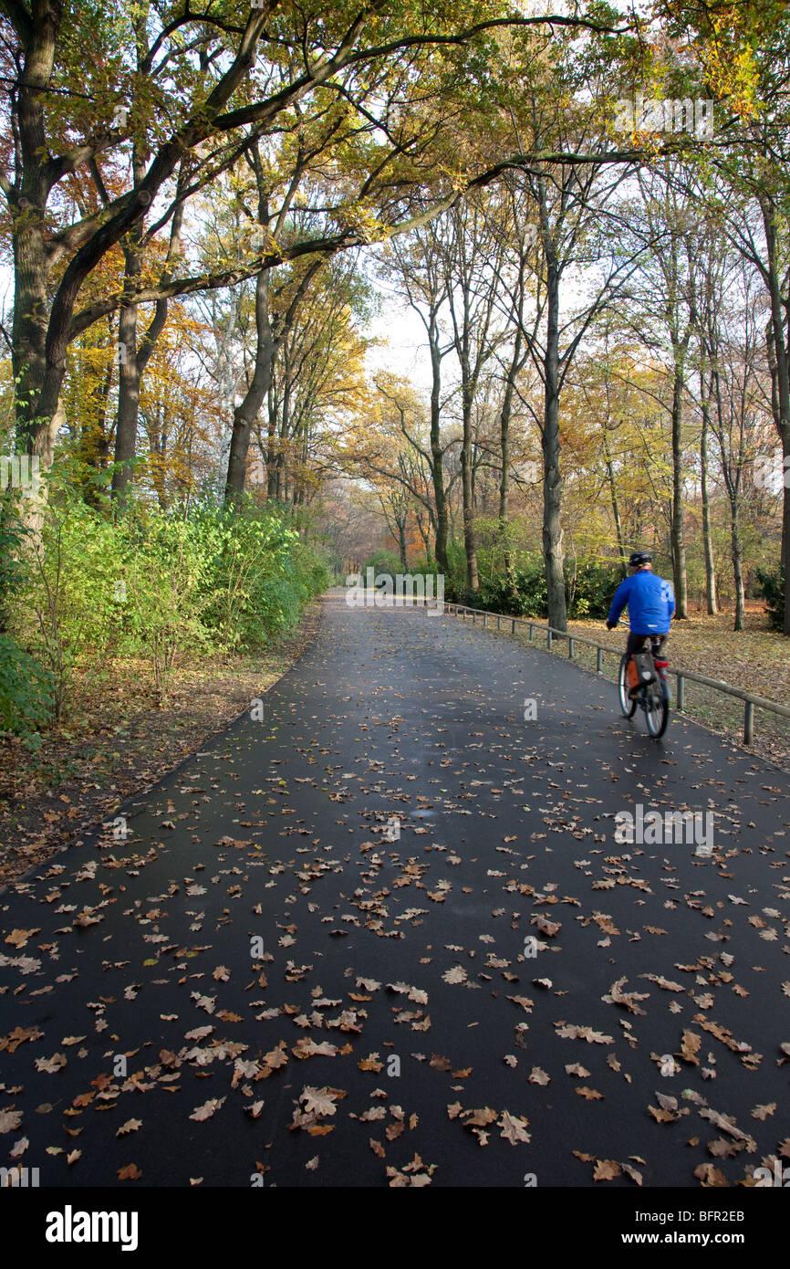 bicycle riding in Tiergarten, Berlin Stock Photo