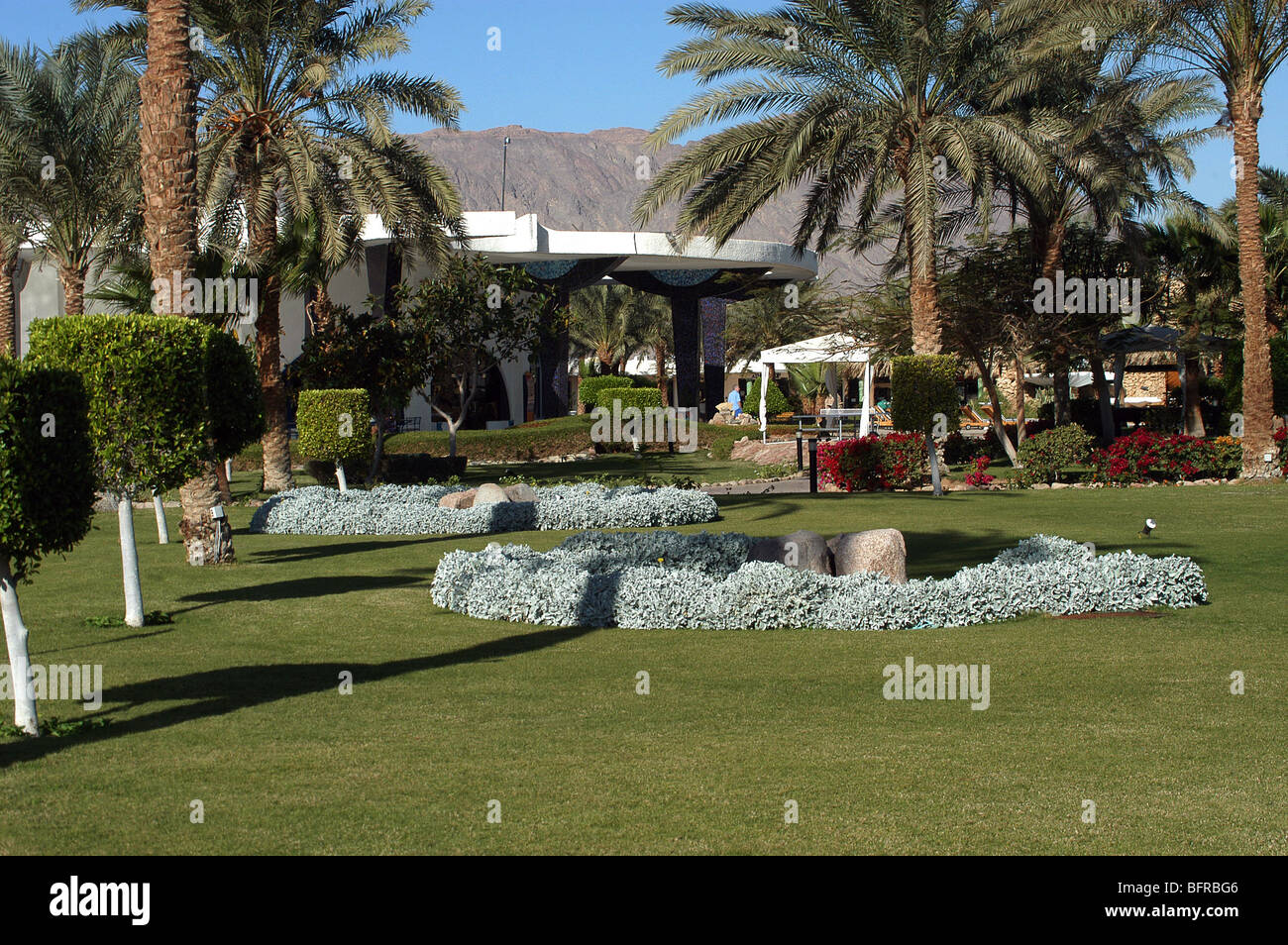 The gardens at the Coral Hilton Hotel, Nuweiba, Egypt - Stock Image