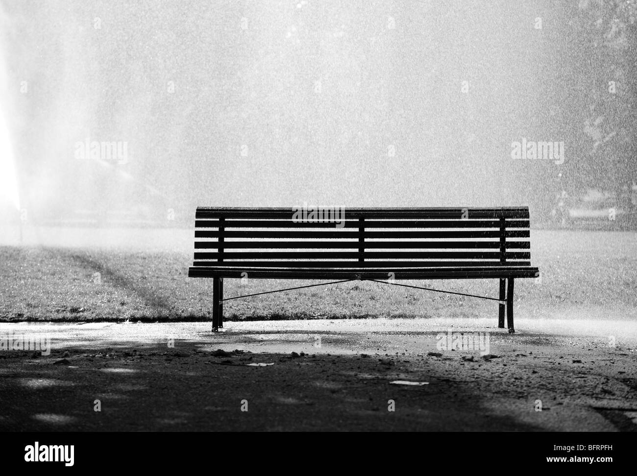 Bench in a park. Black and white concept. - Stock Image
