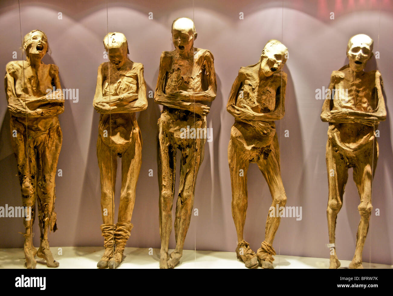 Guanajuato's Museo de las Momias with mummified bodies in glass display cases - Stock Image