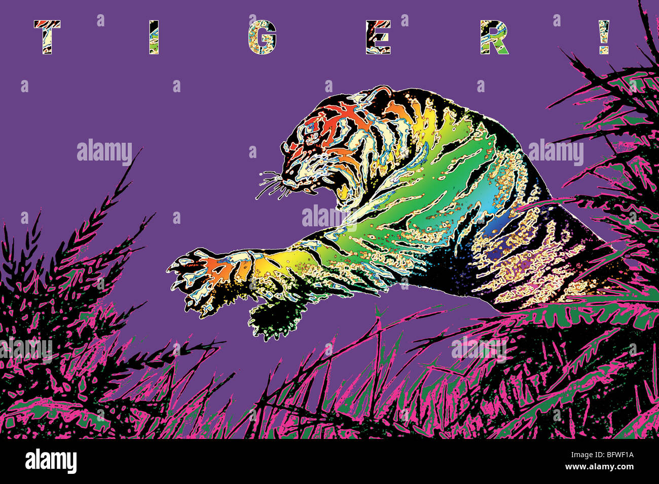 TIGER! - Stock Image