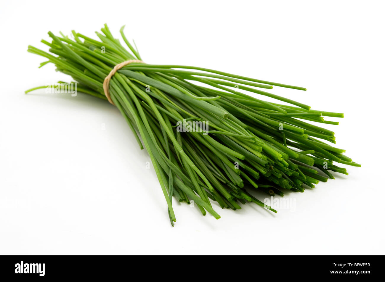 Bunch of chives on a white background - Stock Image