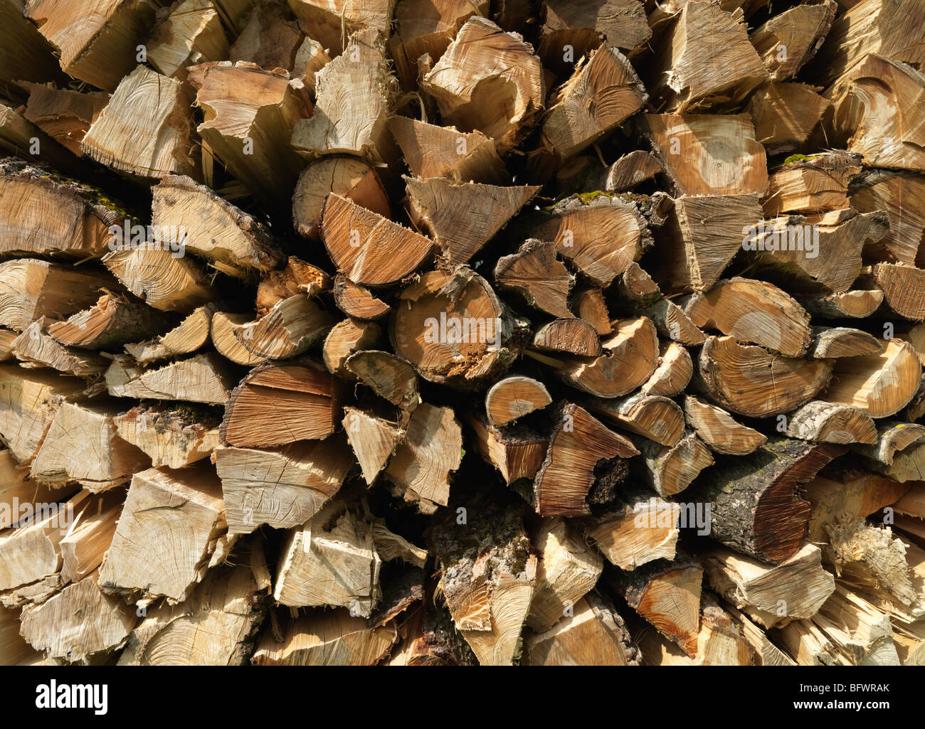 Stack of wooden logs - Stock Image