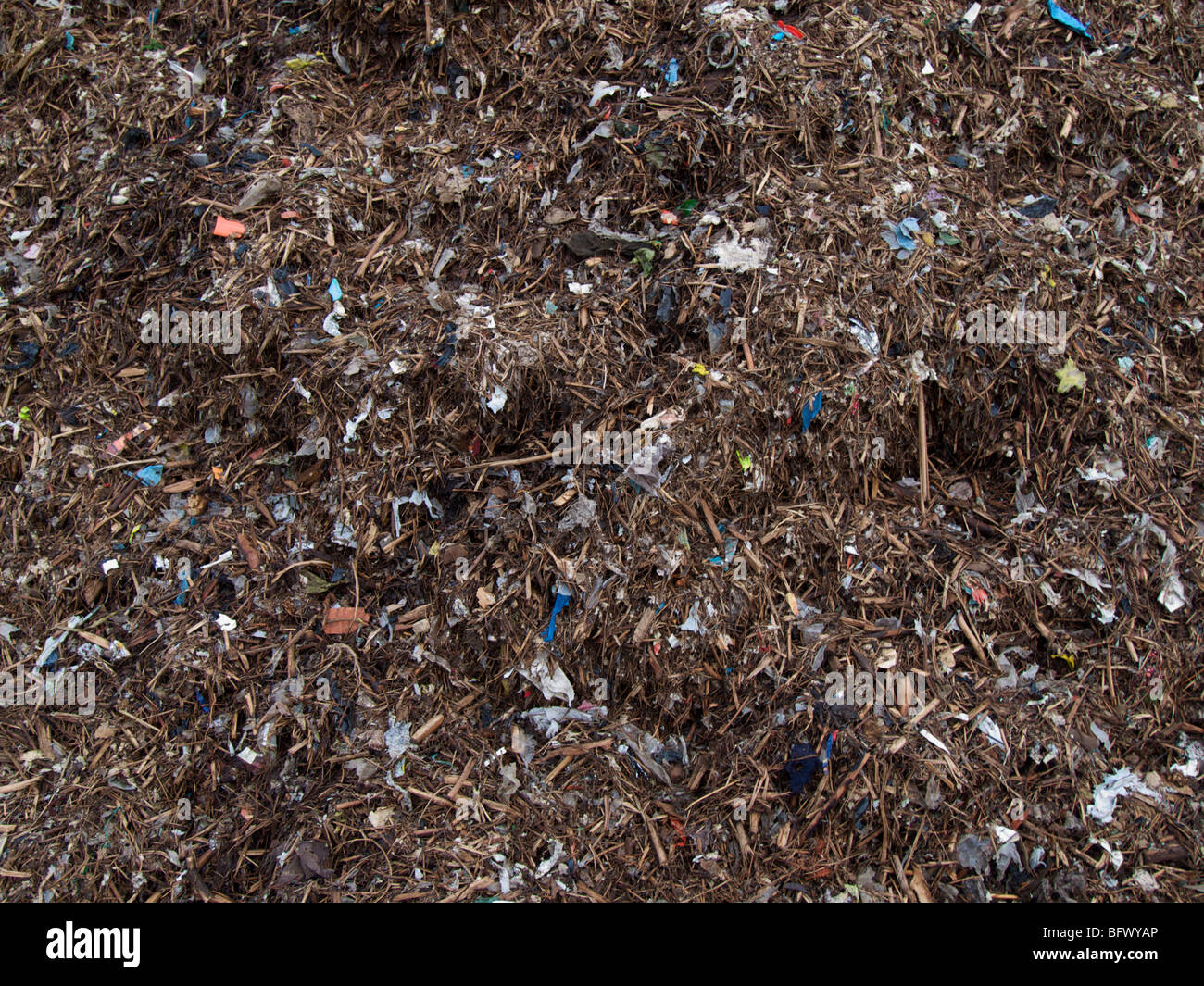 Biomass ready to be burned in a green energy powerplant. Essent composting plant, Maastricht, Zuid Limburg, the Netherlands Stock Photo