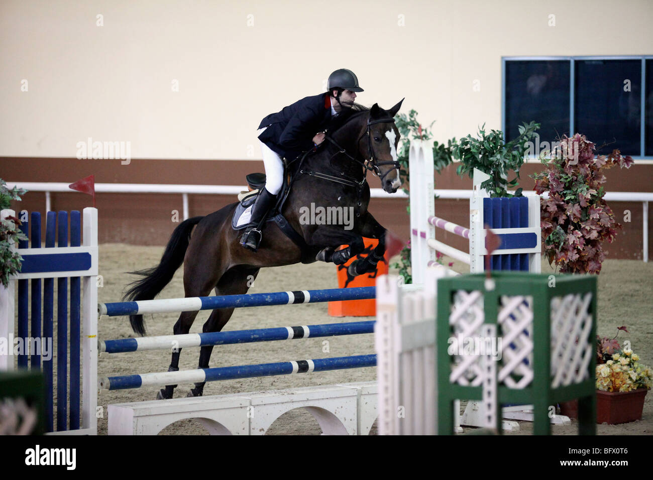 A competitor in a regional show-jumping event at the Qatar Equestrian Federation's indoor Arena in Doha - Stock Image