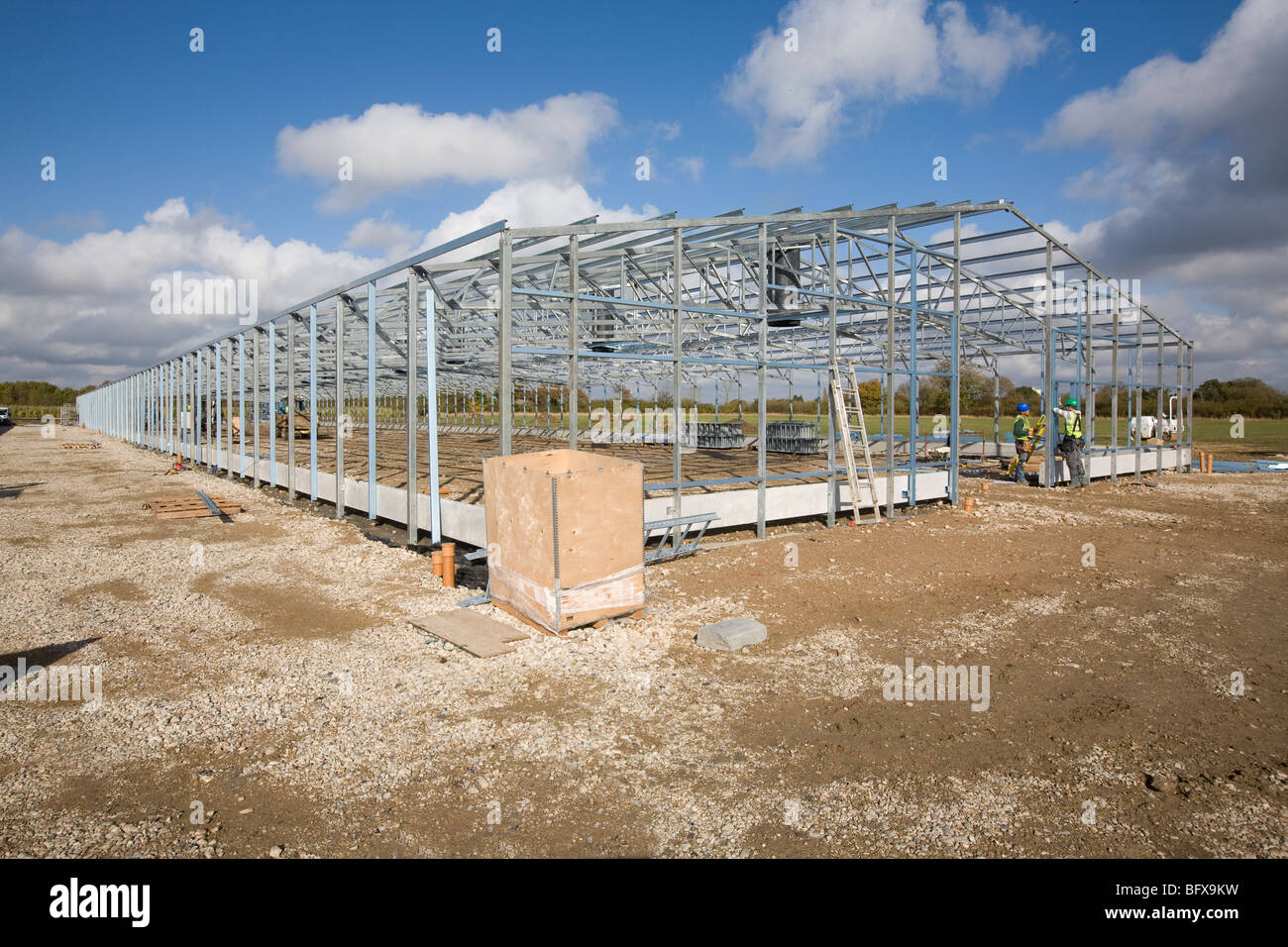 New Poultry Shed Being Constructed - Stock Image