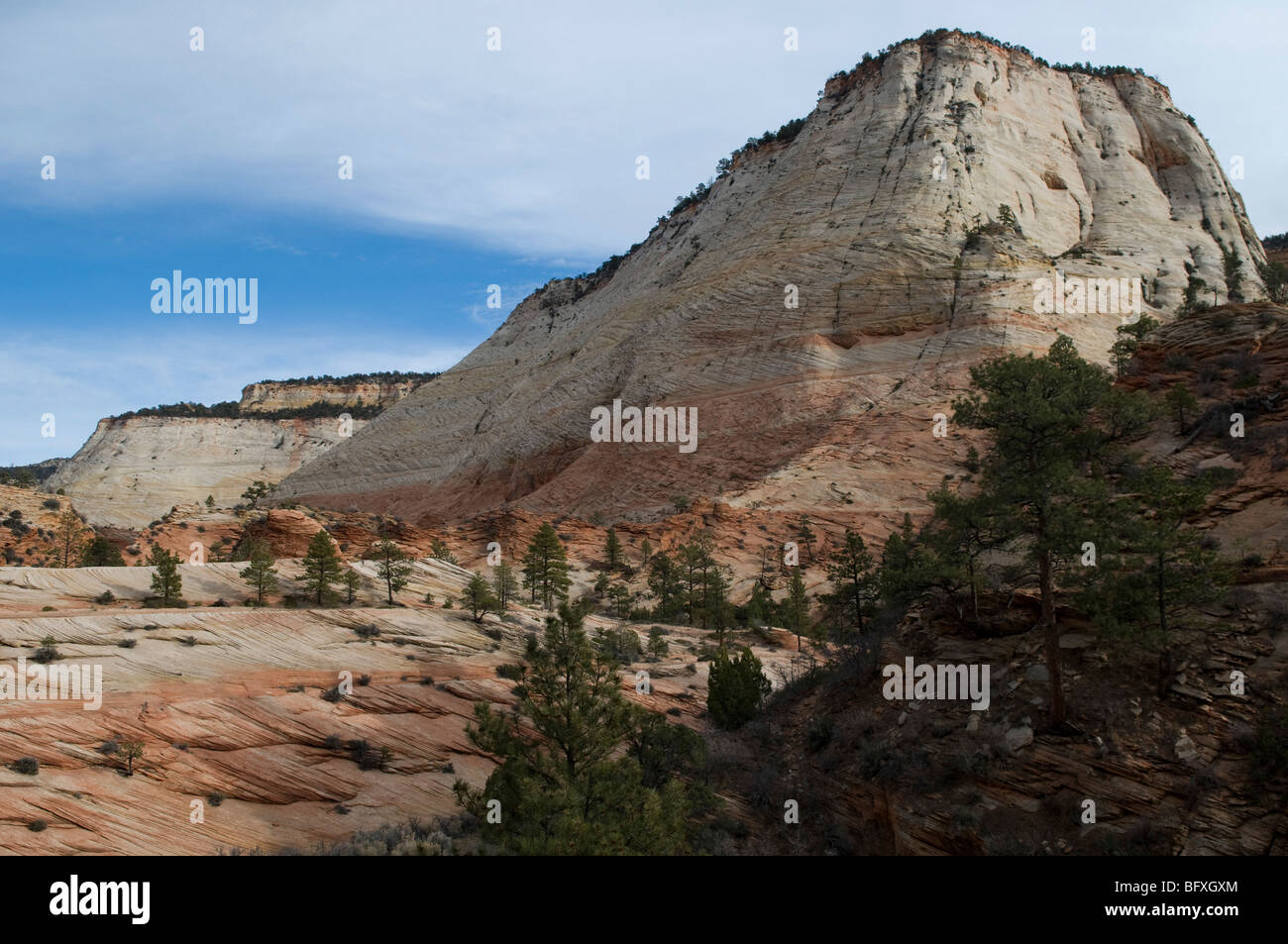 Checkerboard Mesa, Zion Canyon National Park, Utah - Stock Image
