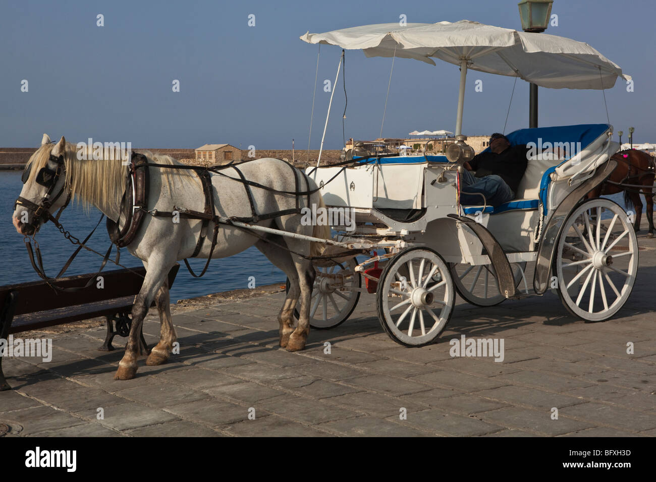 A tourist horse and cart with a reposing driver in the afternoon sun - Stock Image
