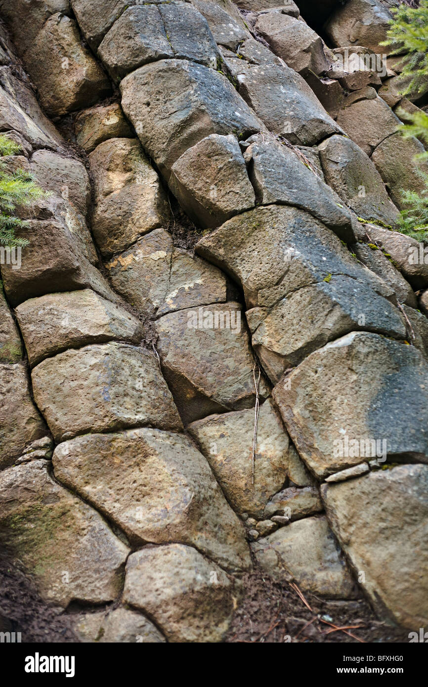 Columnar jointing rock patterns in northern Idaho. - Stock Image