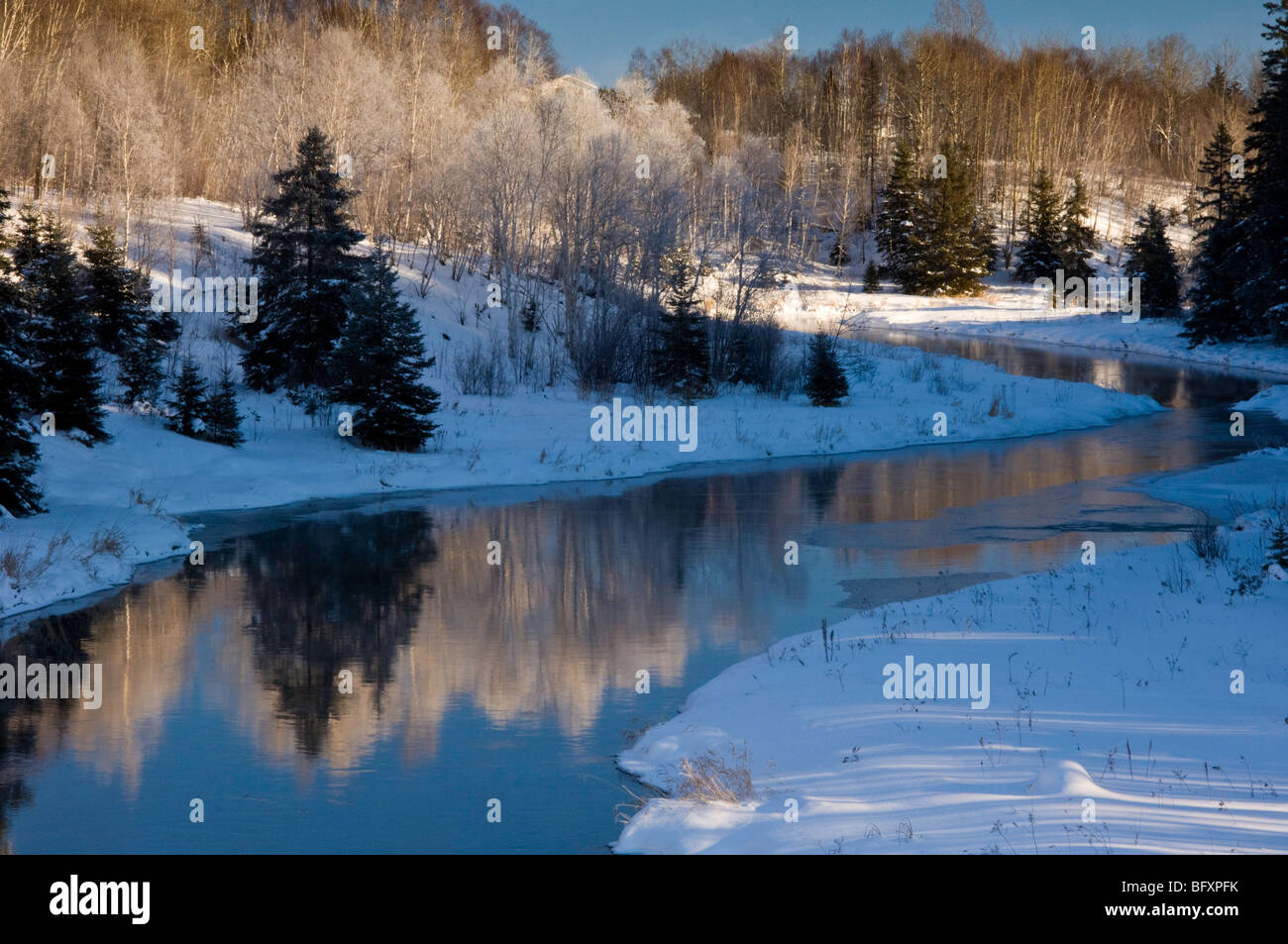 Open water of junction Creek with shoreline spruces and birches, Greater Sudbury, Ontario, Canada - Stock Image