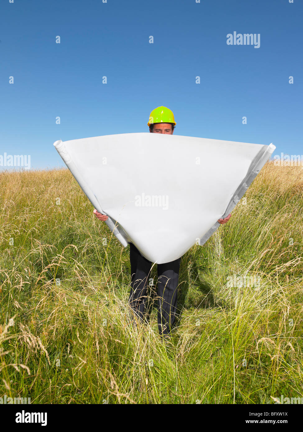 contractor with blueprints in field - Stock Image