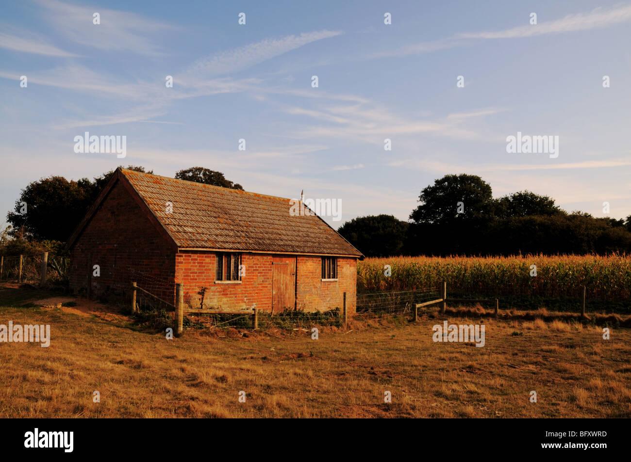Old Farm Store, Sudbourne Suffolk - Stock Image